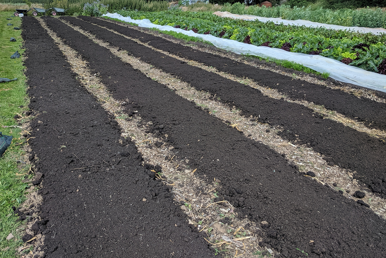 Soil Health for Growers Course Pt.1, Horticulture Course, Organic Training, No Dig Course,