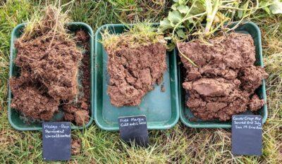 Soil sample, Soil health, regenerative agriculture, arable, conservation agriculture, cover crops
